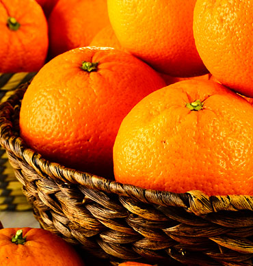 Noor Lebanon - Fruits and vegetables importer and exporter